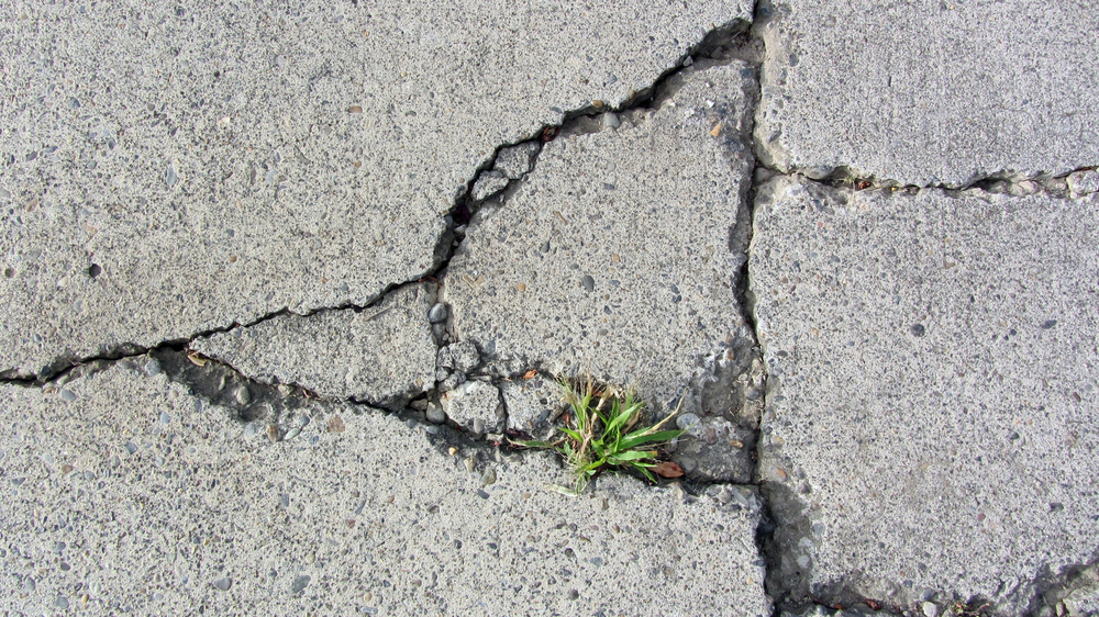 How Prevent Concrete Driveway From Cracking big cracks